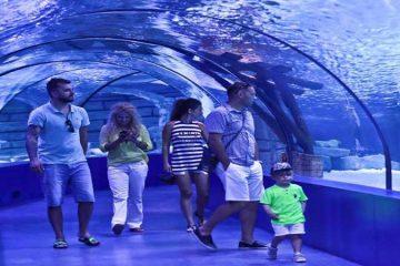 Antalya Akvaryum Turu Programı 2021- Program Detayları