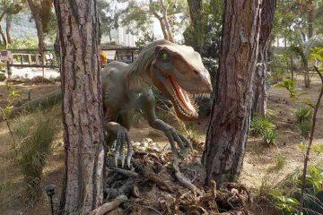Kemer Dinopark - Dinopark Turu ile Geçmişe Yolculuk!